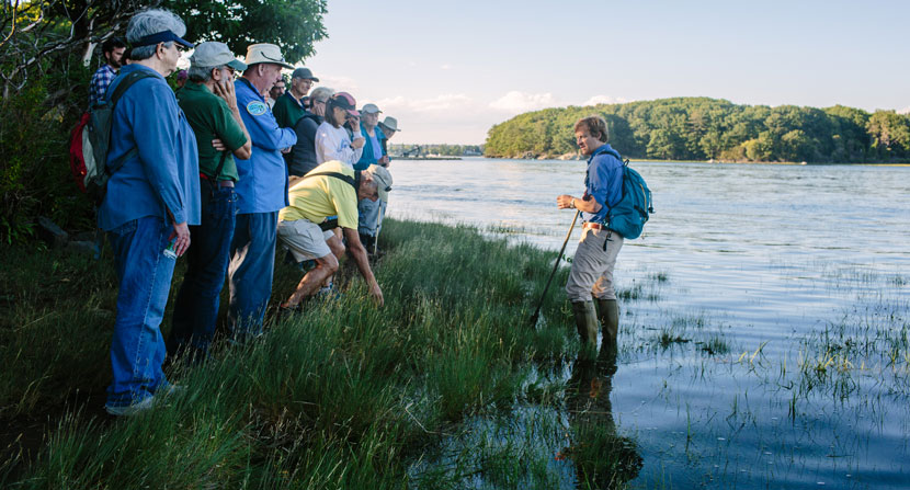 Participants learned why some plants can tolerate salt water and others can't