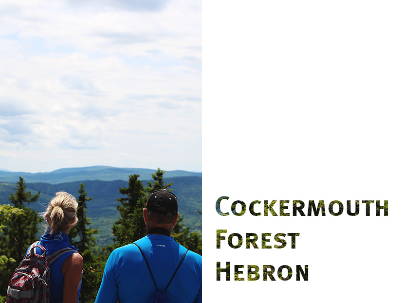 Cockermouth Forest is a favorite of many hikers in the Lakes Region of NH