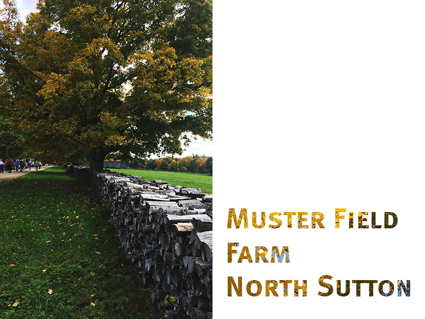 Muster Field Farm Museum in North Sutton is open year-round for self-guided tours