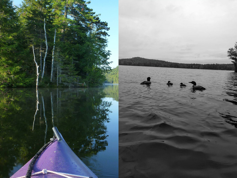 Fog, paddling and loons at Grafton Pond in New Hampshire