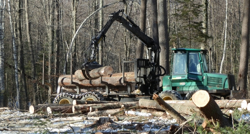 Forwarder in action sustainable forestry in New Hampshire