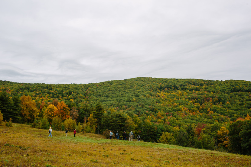 Fields, forests, and foliage on the Burrows Farm Trail at Moose Mountains Reservation in Middleton, NH.