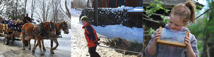 Horse-drawn wagon rides, a Christmas Tree Farm, and School Programs are just a few of many programs offered at The Rocks, the Forest Society's North Country Conservation and Education Center.