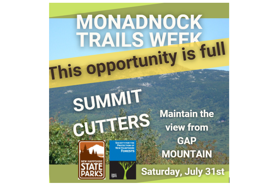 Gap Mountain Summit Cutters