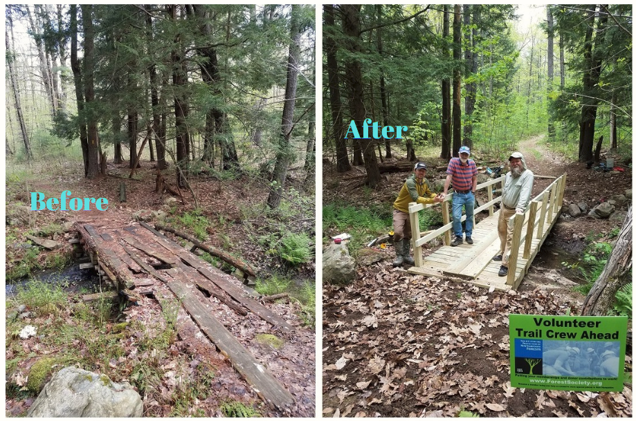 powder major forest volunteers