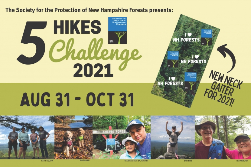 A flyer advertising the 5 Hikes Challenge for 2021.