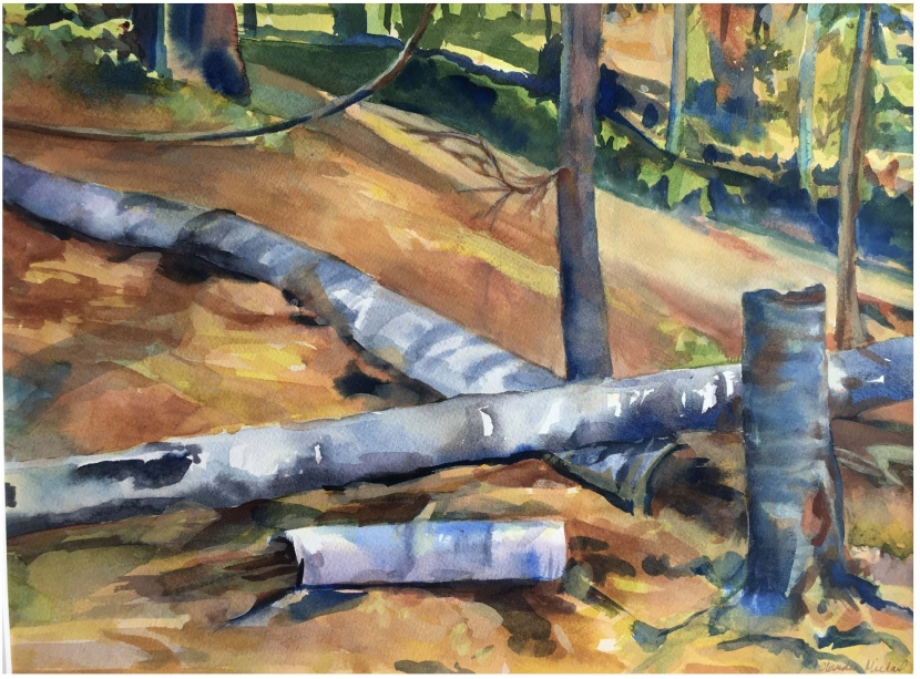 A watercolor painting of fallen birches in sunlight.