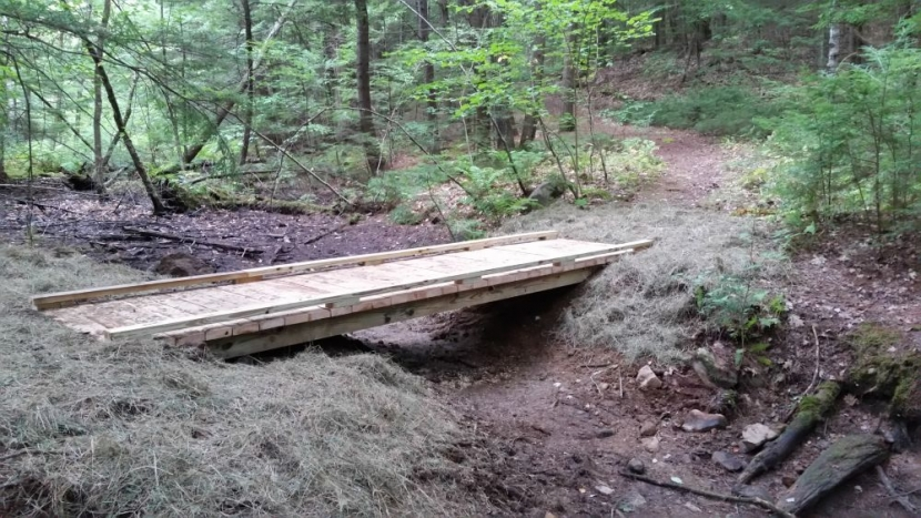 Trail Improvements at Weeks Woods in Gilford | Forest Society