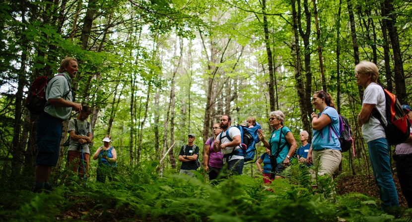 Hikers ask questions and learn at an interpretive hike through a forest in Nottingham