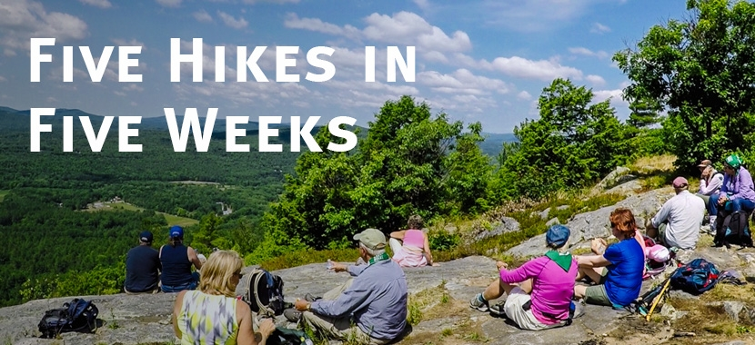 Five Easy Hikes Across New Hampshire with the Forest Society