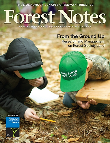 Forest Notes Spring 2021