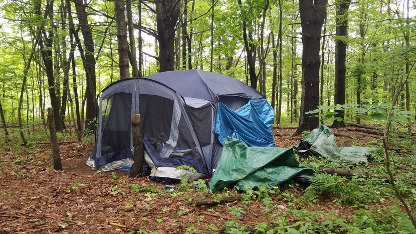 Homeless campsite in the woods in Concord