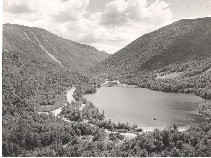 A black and white view of the forested White Mountains overlooking Echo Lake.