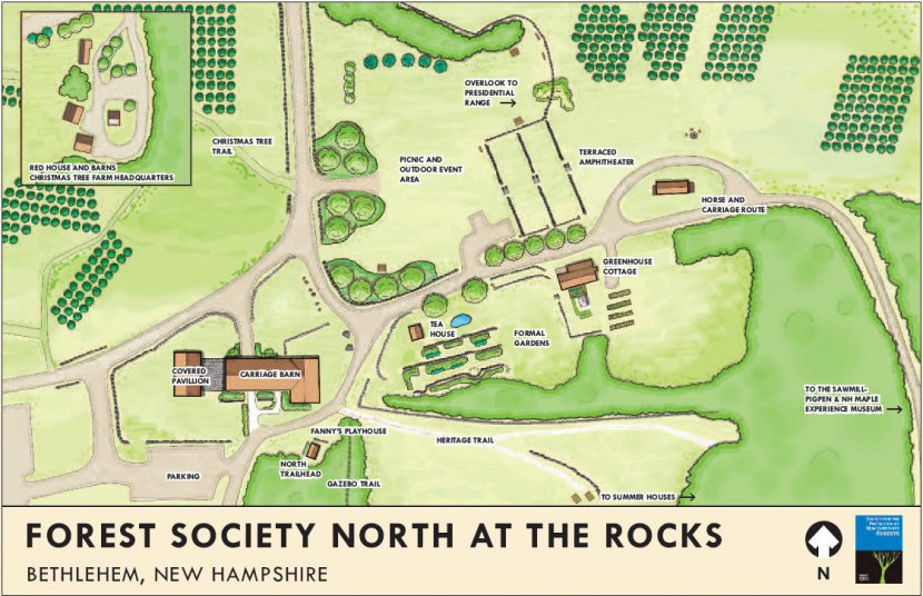 An illustration of the Forest Society North project, planned for construction at The Rocks starting in 2020.
