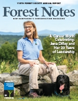 Forest Notes_Cover_Spring 19.jpg