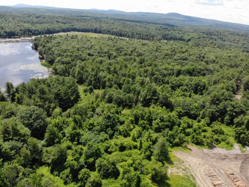 Aerial view of Heald Pond with log deck lower right