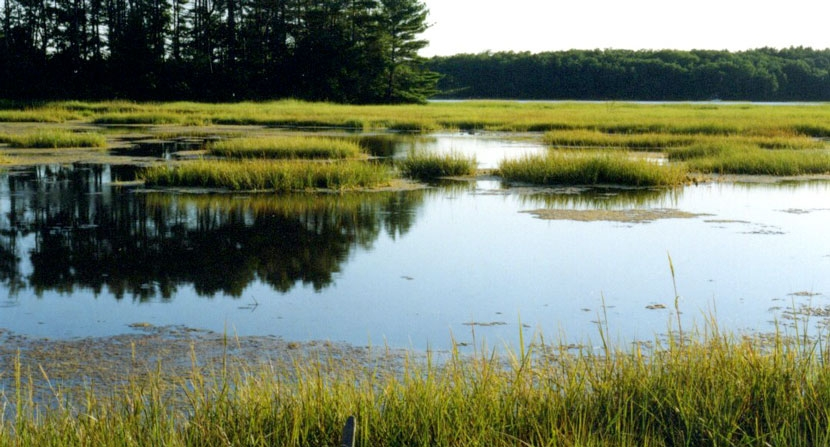 Great Bay National Wildlife Refuge