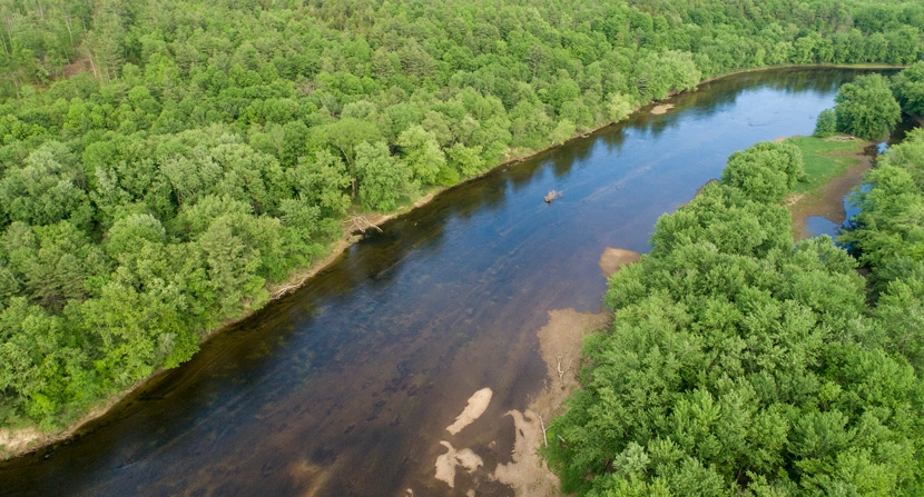 Stillhouse Forest features several exemplary natural communities including significant riverine floodplain forest, numerous vernal pools, oxbows and river bluff communities.