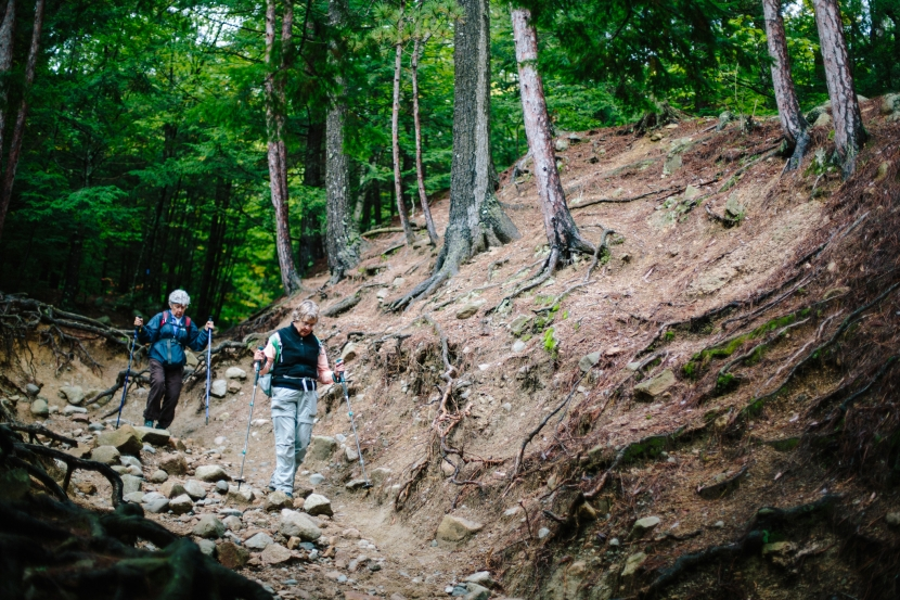 Erosion issues on the trails at Mount Major