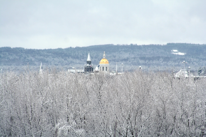 NH State House gold dome surrounded by bare trees with snow on branches