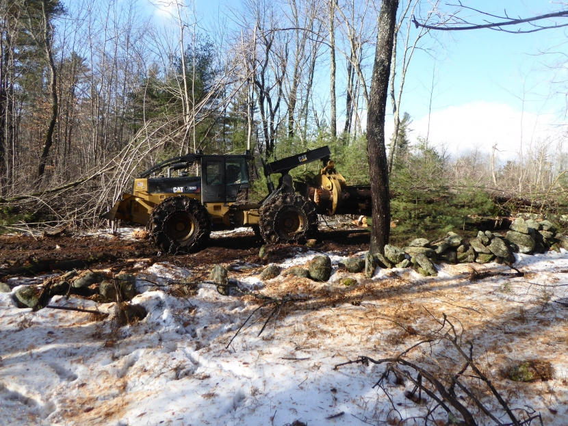 A grapple skidder moves wood to the landing during a timber harvest on David Wilson Land, Sharon, NH.  SPNHF photo.