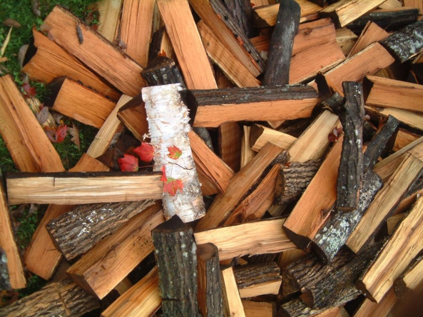 various pieces of hardwood cordwood piled, red maple leaf on top