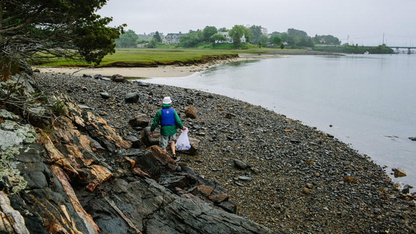 A volunteer explores one of the islands at the mouth of Sagamore Creek