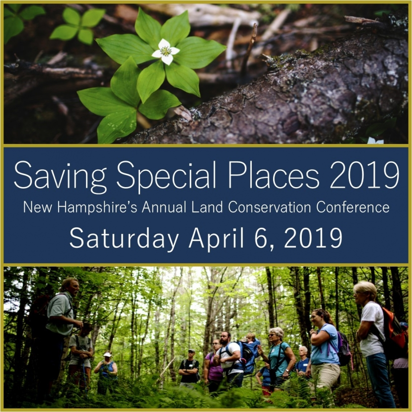 Saving Special Places 2019 graphic. Forest Society photo