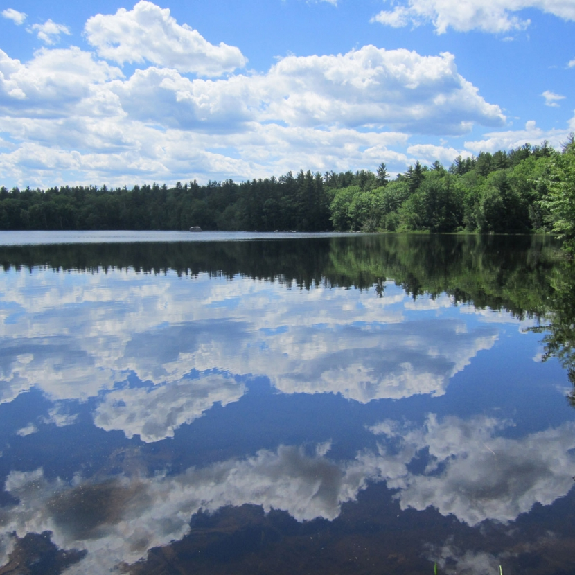 Tower Hill Pond in Auburn, New Hampshire is a drinking water source for provides drinking water for 159,000 people in the regional Manchester area.