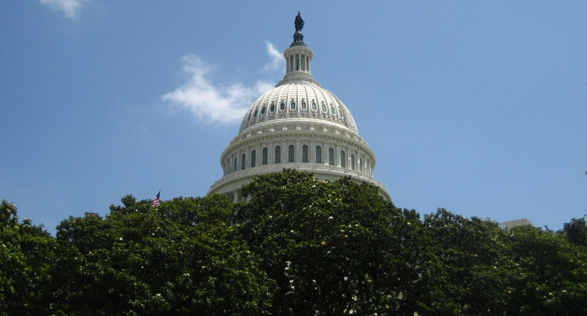 The United States Capitol Building seen above a foreground of deciduous trees.