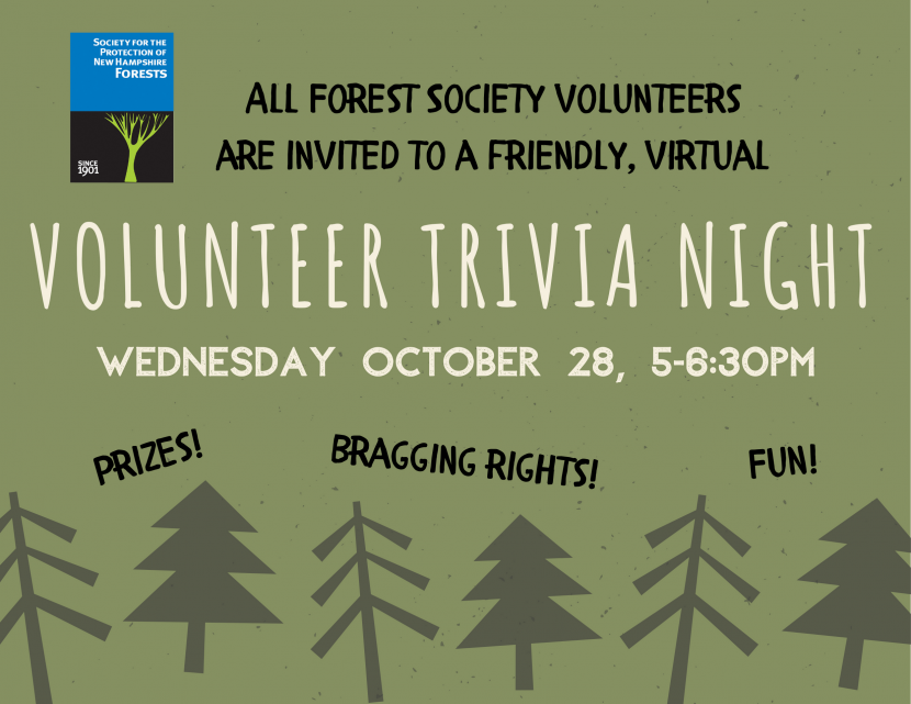 Volunteer Trivia Night Banner