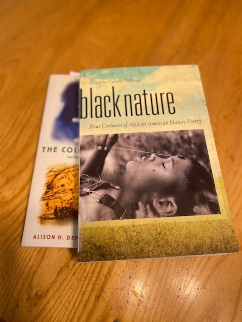 "The covers of two books, including ""black nature"" sit on a table."