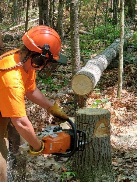A woman with braids under her hard hat practices a bore cut with a chainsaw.