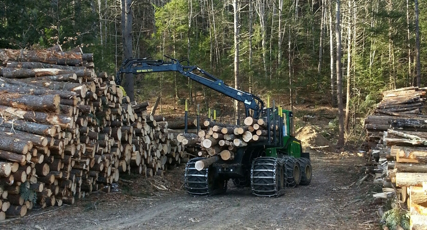 Timber harvest in progress moving logs