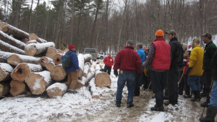 Visitors watch as an active timber harvest is explained.