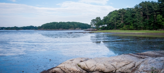 A view of the water from Creek Farm.