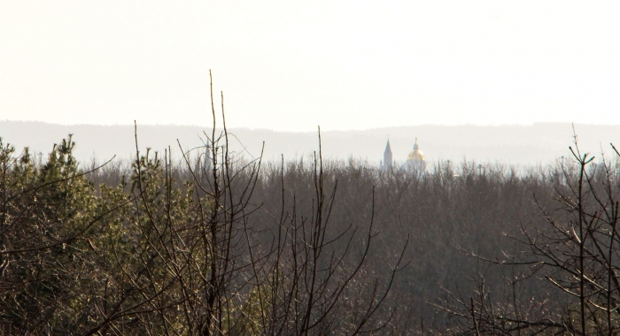 NH Gold Capitol Dome and church steeple in mist surrounded by bare tree tops