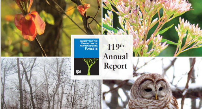 Part of the cover of the Annual Report featuring photos of wildlife.