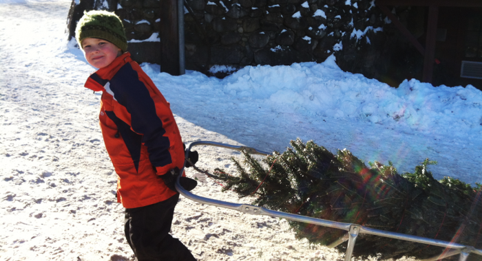 Volunteers of all ages pitch in for Christmas at the Rocks
