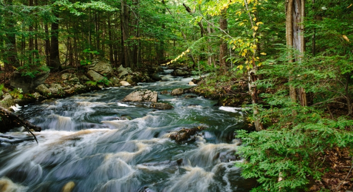 Stream in the Merrimack River watershed that feeds Tower Hill Pond, providing drinking water