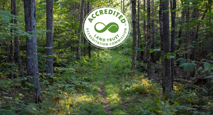 Land Trust Accreditation Commission seal over a hiking trail in a northern deciduous forest