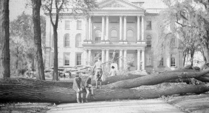 Elms downed from the Hurricane of 1938 at the New Hampshire statehouse