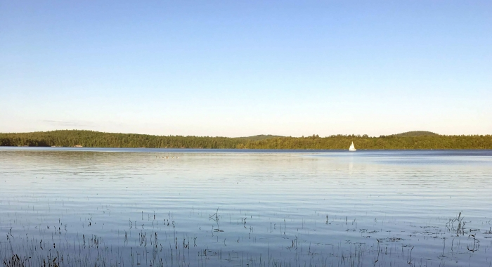 A view of a lake in summer sunshine with a sailboat on the water.