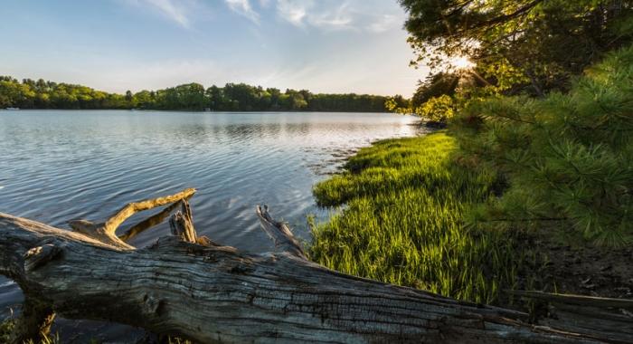 Emery Farm conservation project protects 2,500 feet of tidal frontage on the Oyster River and Smith Creek in Durham, New Hampshire