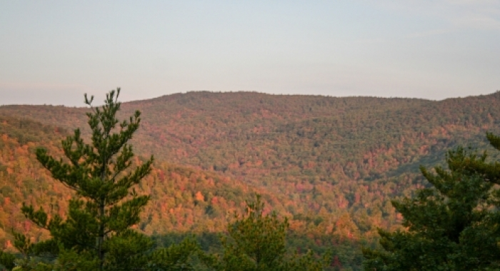 Moose Mountains distant view is full fall colors blue sky