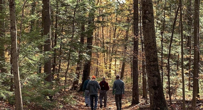 A group including the Tree Farmers of the Year walks down a leafy path.