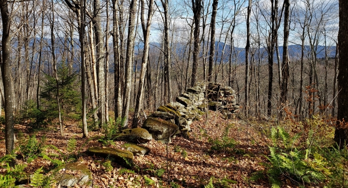 Old stone foundation - stone wall - rock wall - woods – forests