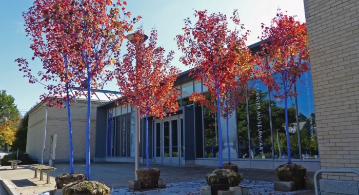 The trunks of trees, with orange leaves, are painted blue at the entrance of the Currier Museum.