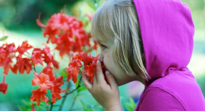 A young girl smells spring blooms