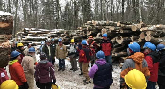 Forestry Education at Monadnock. Photo Wendy Weisiger